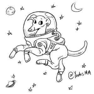 Whippets in Space